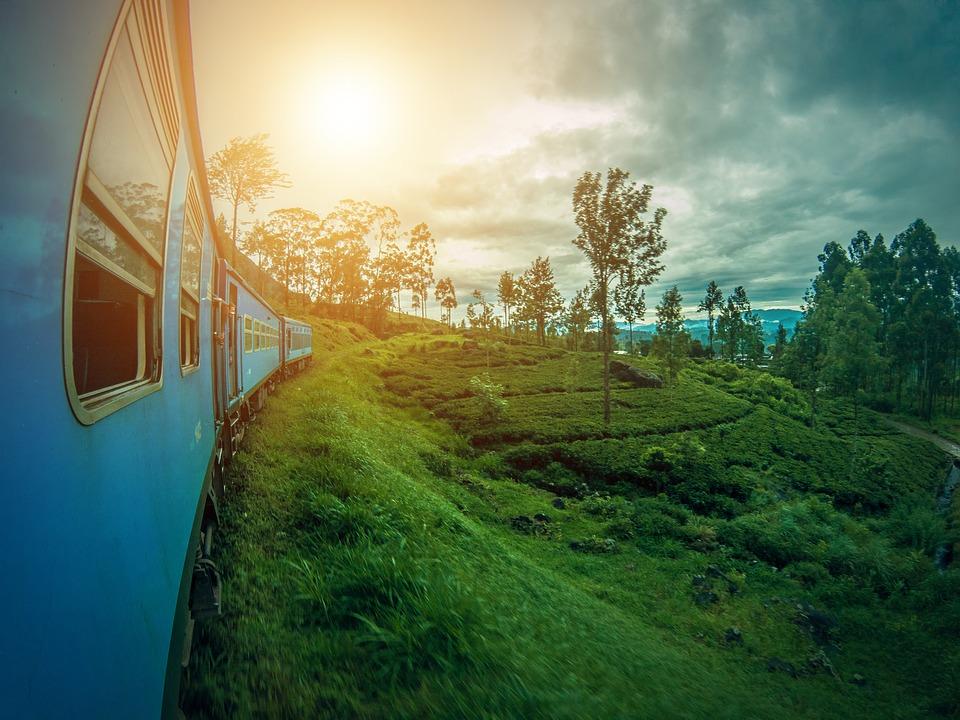 Sri Lanka campos de té