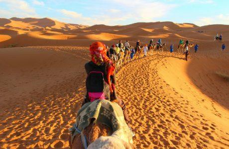 Paseo en callemo por el desierto Marruecos
